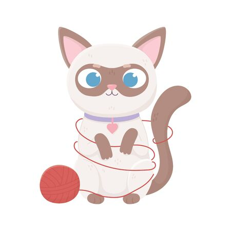 cute siamese cat with wool ball, pets