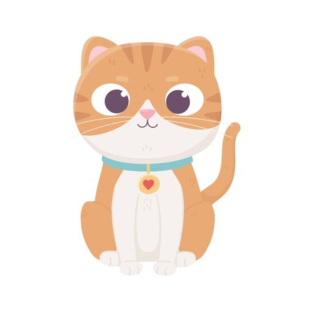 cute little cat with collar domestic, pets vector illustration