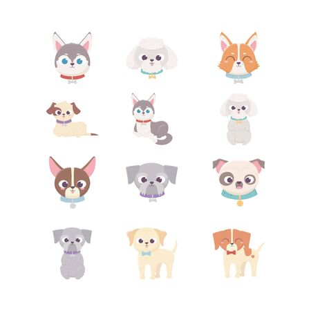 cute dog domestic cartoon animal, set pets vector illustration  イラスト・ベクター素材
