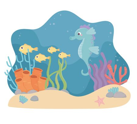 seahorse fishes starfish sand life coral reef cartoon under the sea vector illustration
