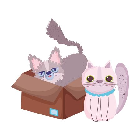 cute stretching cat and other in the box feline cartoon pets vector illustration Ilustração