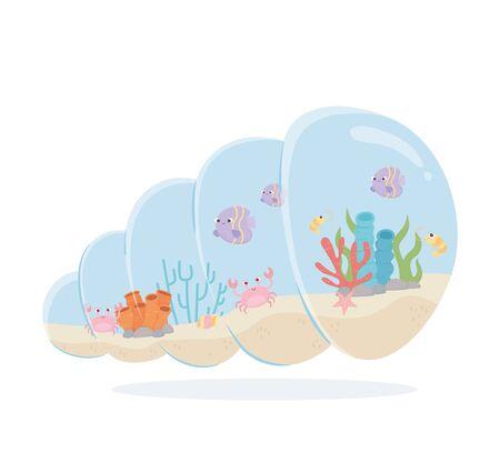fishes crab shrimp coral snail shell shaped aquarium under sea cartoon vector illustration Ilustrace