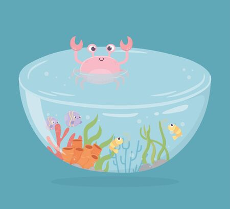 crab shrimp fishes coral water shaped tank for fishes under sea cartoon vector illustration