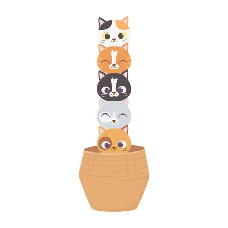 cats make me happy, cute cats pets animals in basket