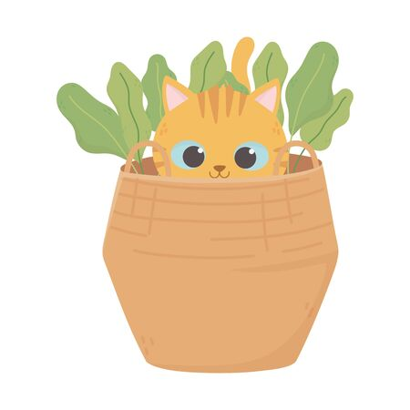 little cat in the basket with nature icon