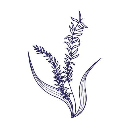 foliage greenery vegetation plants leaves nature icon design line style