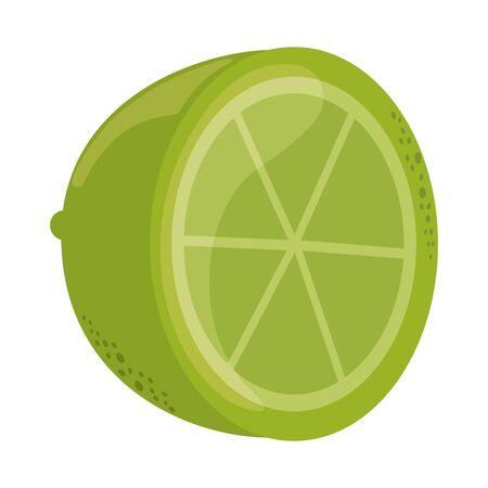slice lemon citrus fruit tropical vector illustration flat style icon