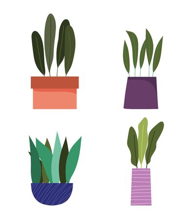 potted plants decoration botanical interior isolated design vector illustration 版權商用圖片