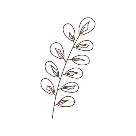 branch leaves foliage botanical isolated icon white background linear design Çizim