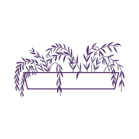 potted plant decoration interior gardening isolated icon design vector illustration