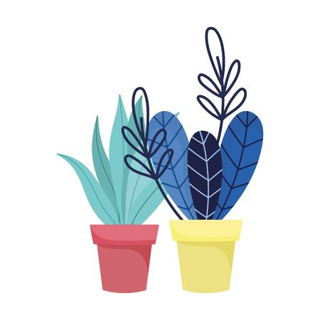 Isolated plants inside pots vector design Illustration
