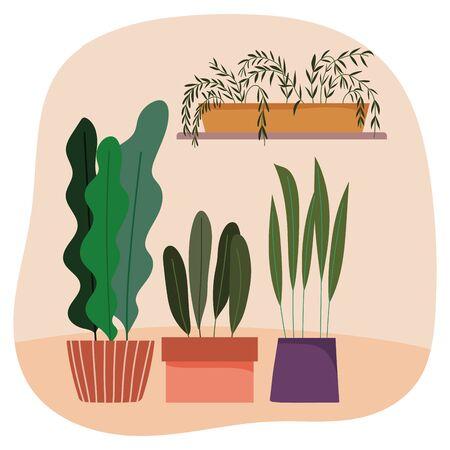 potted plants gardening decoration interior ornament design vector illustration