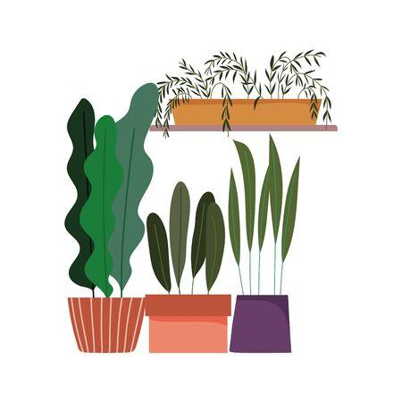 potted plants gardening decoration interior ornament design Vectores