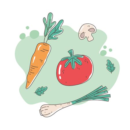 healthy food nutrition diet organic tomato carrot onion and mushroom fresh vector illustration