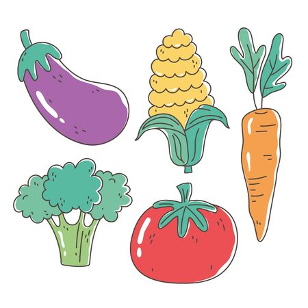 healthy food nutrition diet organic eggplant tomato carrot corn and broccoli vegetables icons vector illustration