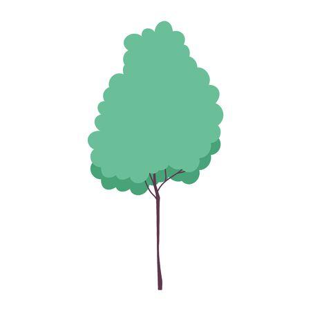 tree vegetation foliage forest isolated icon design white background vector illustration