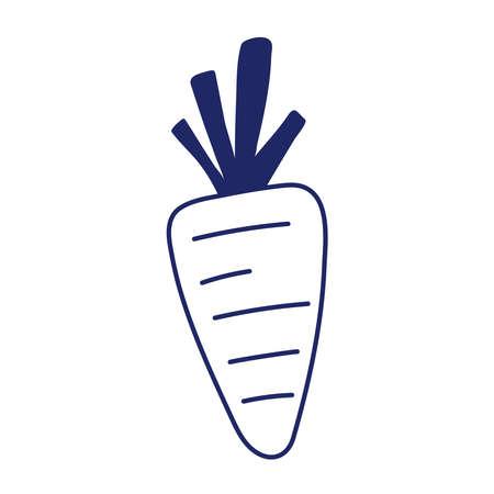 carrot vegetable fresh nutrition vitamins diet isolated design icon vector illustration