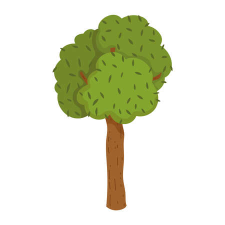 tree greenery plant forest foliage isolated icon design white background vector illustration
