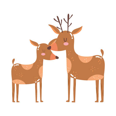 cute animals reindeers cartoon isolated icon design white background vector illustration