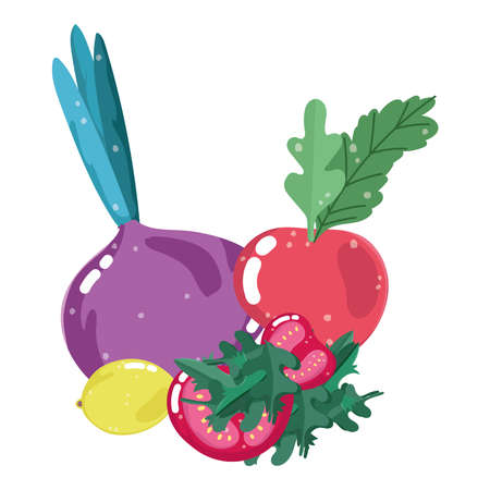 food healthy nutrition vitamin fresh organic beet radish tomato and lemon vector illustration