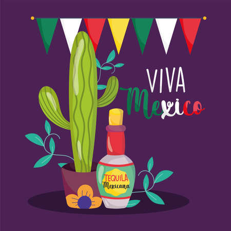 mexican independence day, cactus tequila bottle bunting decoration, viva mexico is celebrated on september vector illustration