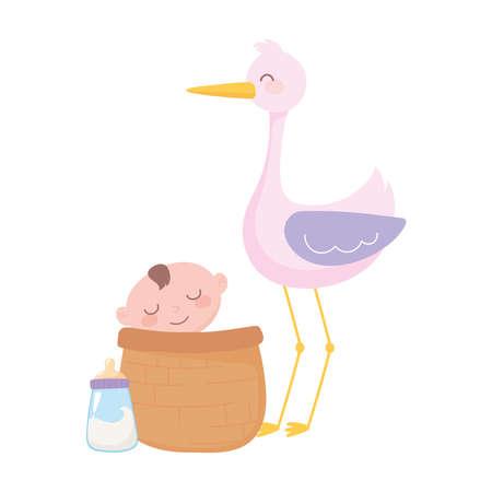 baby shower, stork and little boy in basket, celebration welcome newborn vector illustration