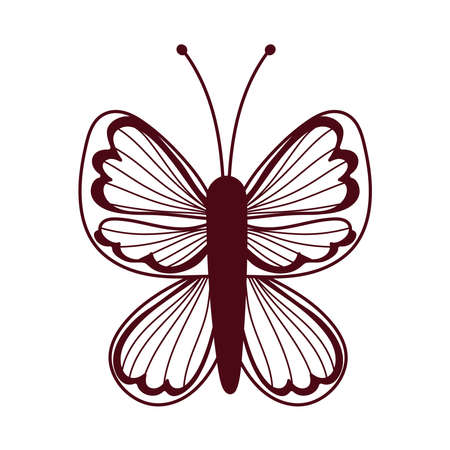 beautiful butterfly delicate insect isolated icon white background vector and illustration line style Vector Illustration