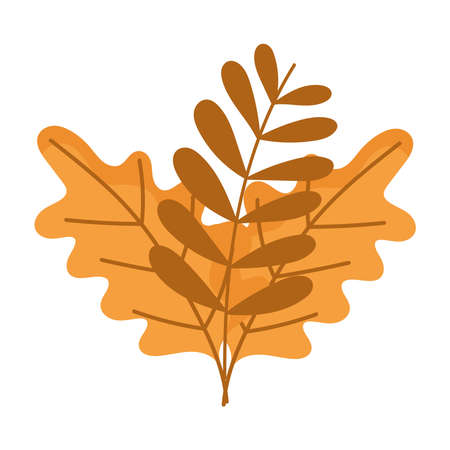 branch leaves autumn isolated design white background vector illustration