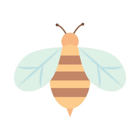 bee insect animal nature cartoon flat icon style vector illustration
