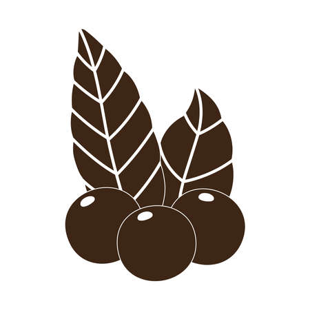 coffee grains leaves nature vector illustration silhouette icon style
