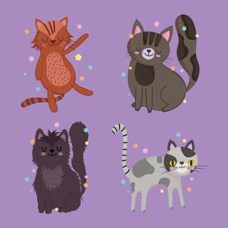 set of different cats pet animal cartoon violet background vector illustration