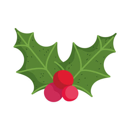 merry christmas, holly berry decoration icon isolation vector illustration