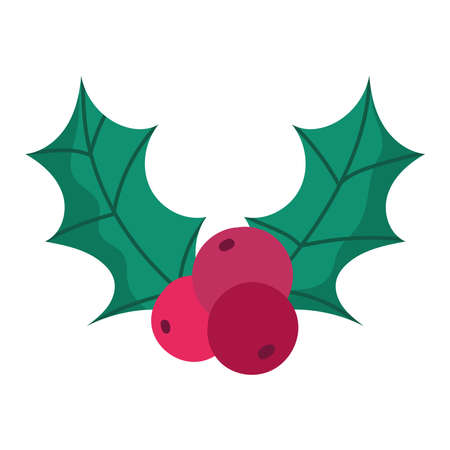 merry christmas holly berry decoration and celebration icon vector illustration