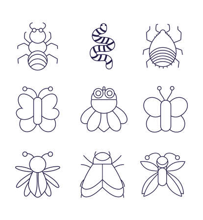 collection bugs natural animal cartoon in linear style vector illustration