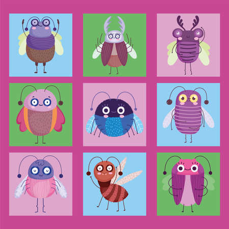 cute bugs insects animal in cartoon style vector illustration 向量圖像
