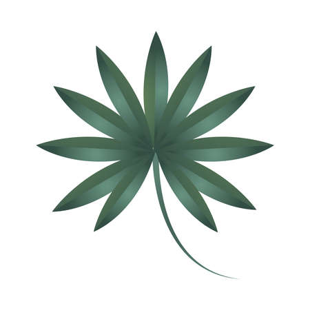 branch foliage ecology plant nature icon isolated vector illustration