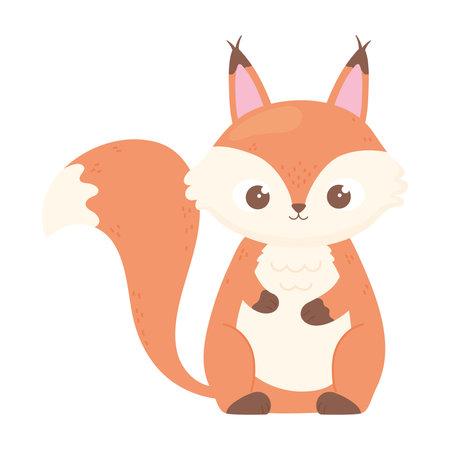 cute squirrel cartoon animal icon white background vector illustration