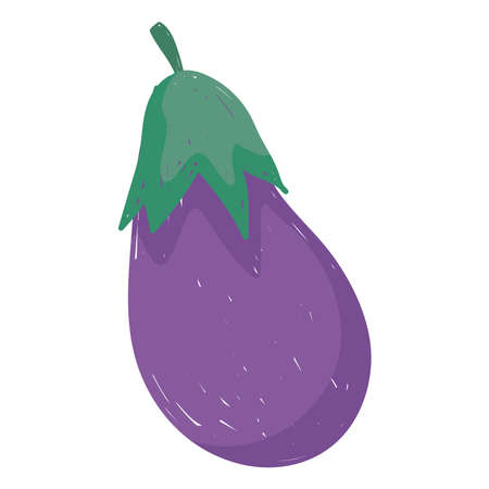eggplant fresh vegetable health food icon white background vector illustration cartoon style vector illustration