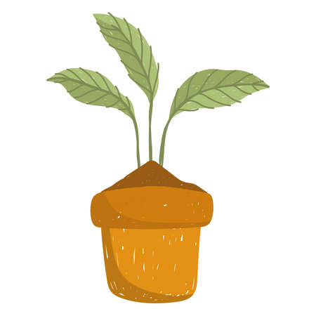 gardening pant in pot nature hand drawn color vector illustration
