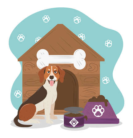 pet dog beagle breed house and bowl with food vector illustration