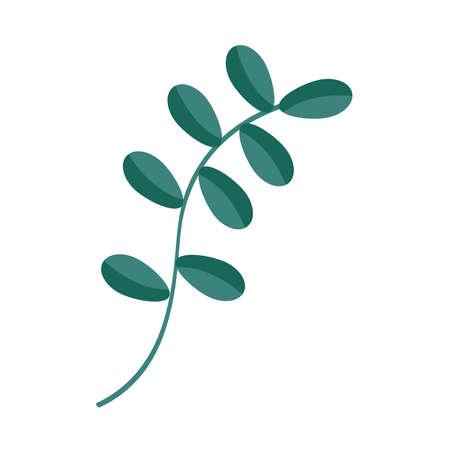 foliage leaves branch vegetation plant Illusztráció