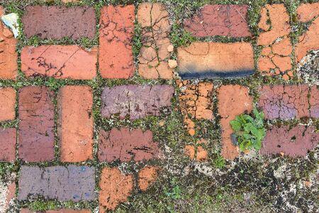 brick garden path cobblestone sidewalk pavers