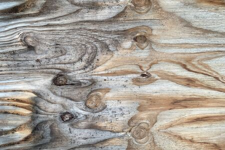an old knotty wood board panel