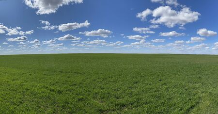 on a sunny spring time day a bright green grass field blue sky panoramic view