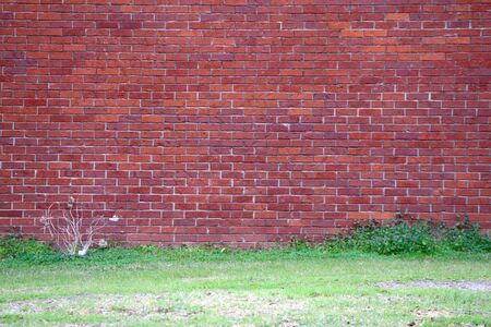 a bright old red brick garden path wall with grass Stock Photo