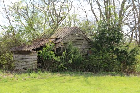 an overgrown green meadow with abandoned country farm barn building Stock Photo