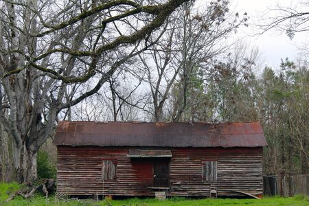 a rusted tin roof barn woth old trees anad fresh grass Stock Photo