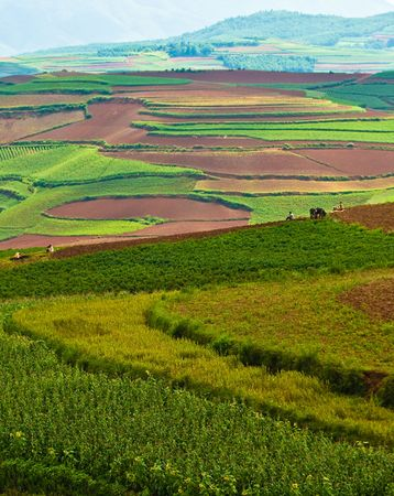colorful scenery of hongtudi (2) photo