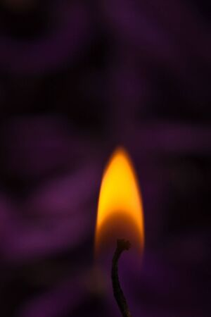 closeup of orange flame with soothing purple background photo