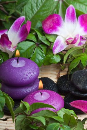 thermotherapy: wet purple toned candles and hotstones in tropical setting (1)